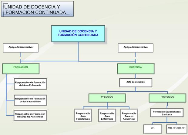 Organigrama Docencia